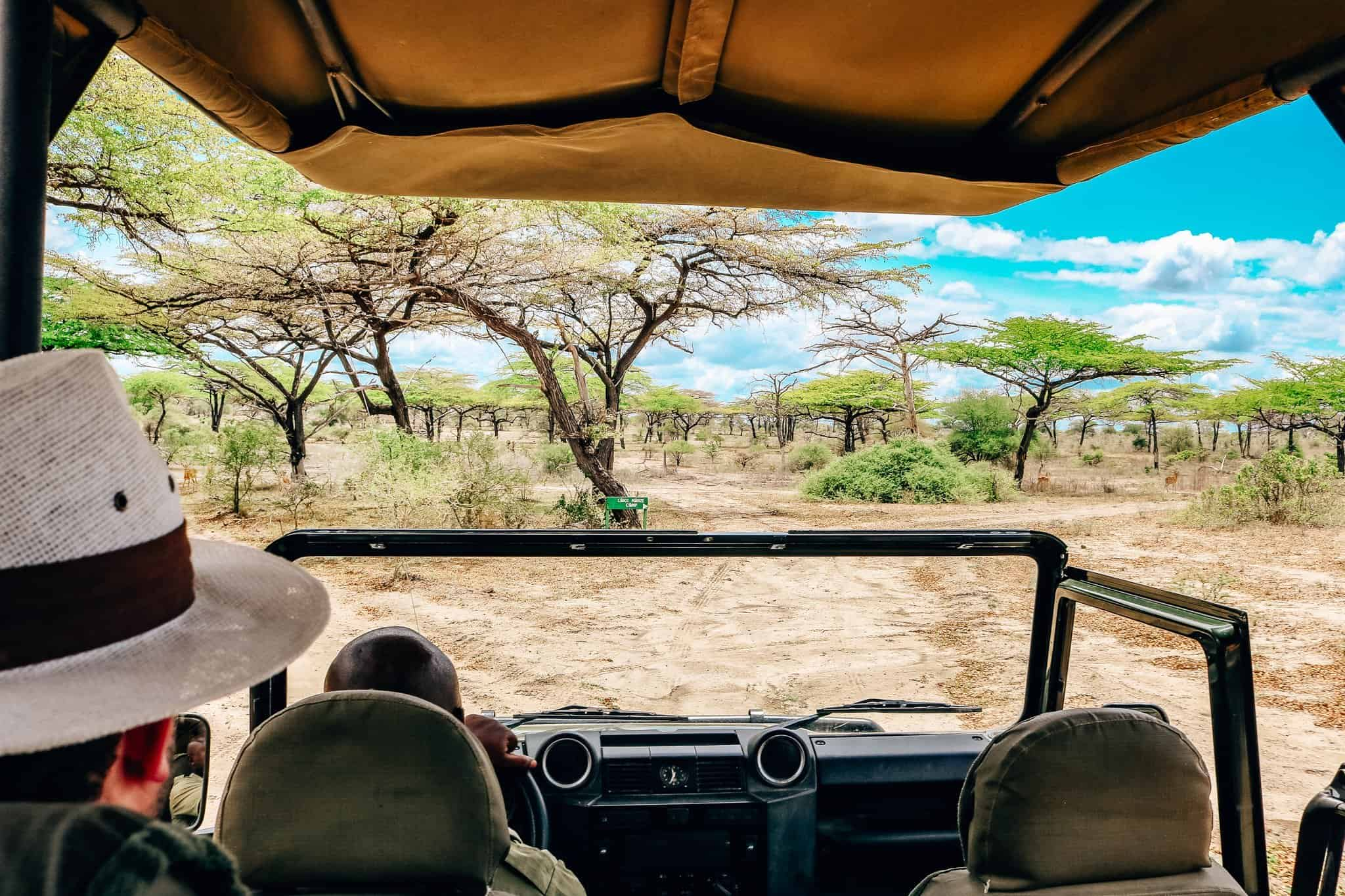 View from the Safari Car - African Safari Drive in the Selous Game Reserve